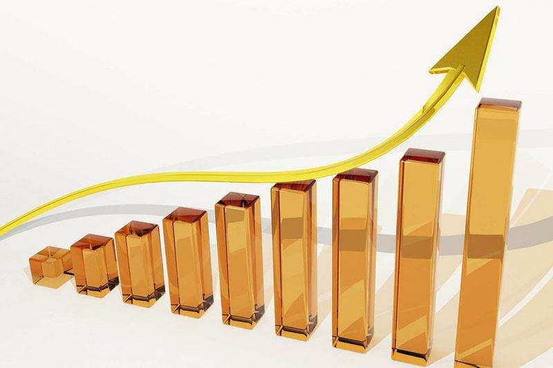 Use Network Marketing to Maximize Profits
